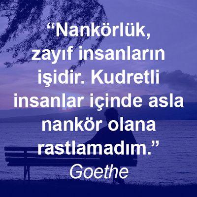 Nankörlük, zayıf insanların işidir. Kudretli insanlar içinde asla nankör olana rastlamadım. Goethe