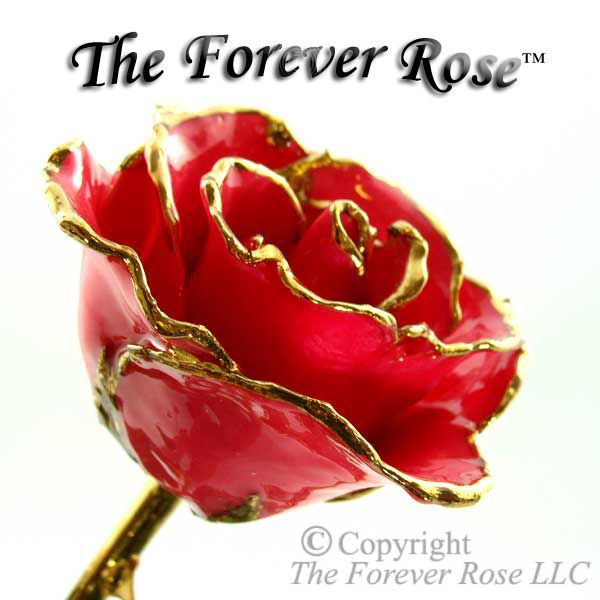 Need a Great Valentine's Day Gift? Check out our 24K Gold Dipped Roses... The Rose that Lasts a Lifetime!