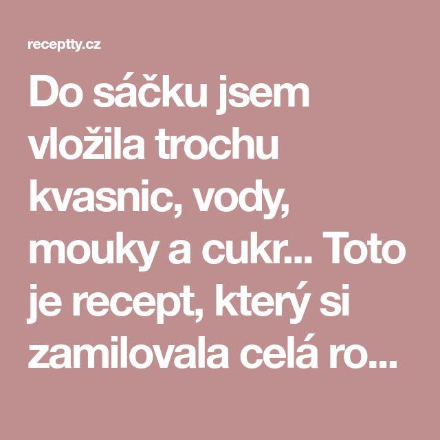 Do sáčku jsem vložila trochu kvasnic, vody, mouky a cukr... Toto je recept, který si zamilovala celá rodina - Strana 2 z 2 - Receptty.cz
