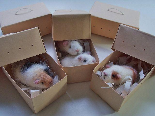 Needle felted guinea pigs by Gaizymai, via Flickr