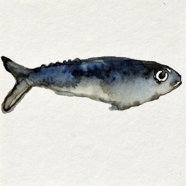 013 Fishy2 - ORIGINAL watercolor painting mounted on 7x7 cm plywood - 2,75x2,75 inch - 18 mm thick - Unique Item by Edart on Etsy