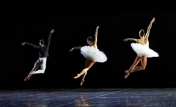 "galina-ulanova: """"André Santos, Carina Roberts, and Chihiro Nomura in David Dawson's 5 (West Australian Ballet, 2016) "" """