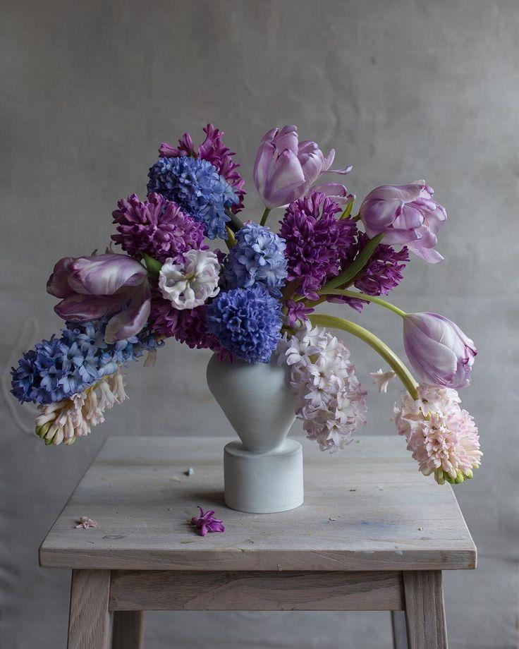 """#hyacinth…"""""""