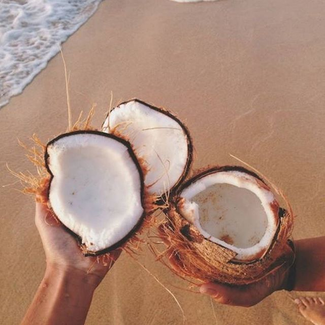 If the tropics are too far from you, a jar of Melrose Organic Coconut Oil can help! 🌱🌴 With a fresh coconut-y aroma and made from raw coconuts, you'll be one spoonful closer to feeling summer☀️😍via @pinterest #MelroseHealth