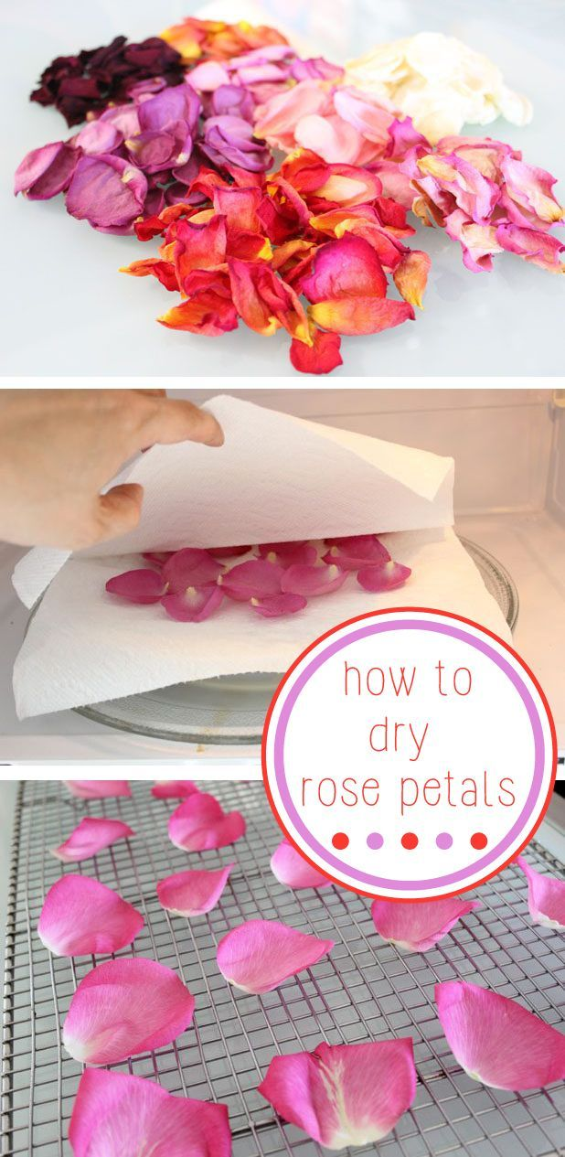 This is the best way to preserve the beauty and fragrance of a beautiful bouquet of fresh roses.  Drying them make them great embellishments for cards, confetti for weddings and bridal showers, and potpourri. www.ehow.com/...