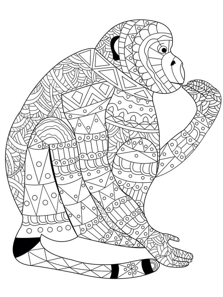 Monkey Coloring Book For Adults Vector Illustration Anti Stress Adult