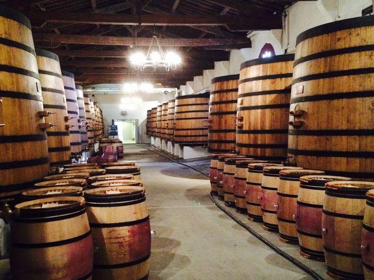 #ChâteauMargaux: Une fois la fermentation alcoolique terminée, la macération se poursuit jusqu'à l'écoulage ; les vins sont alors presque « finis ». Mais pour qu'ils soient tout à fait stables, il faut que s'accomplisse une dernière transformation biochimique : la fermentation par des bactéries de l'acide malique en acide lactique. Elle est spontanée, mais ne se déclenche pas toujours facilement ; il faut que le vin soit maintenu à une température d'au moins 20°C.