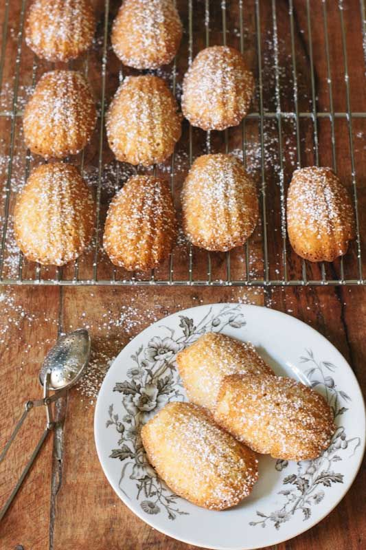 The perfect recipe for that special jar of honey - Honey Madeleines • theVintageMixer.com