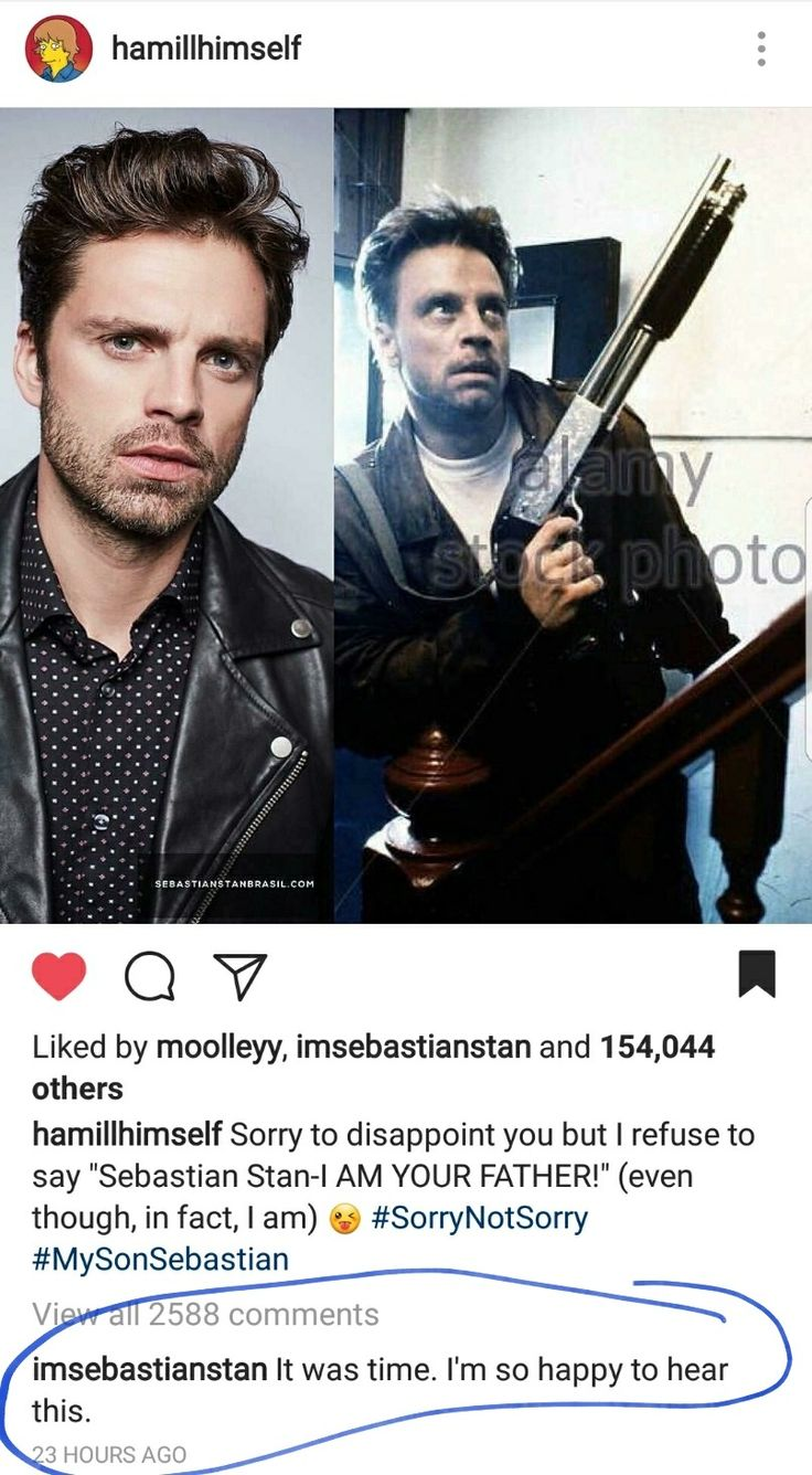 """Mark Hamill saying Sebastian Stan was his """"son"""". They do look exactly alike though!"""