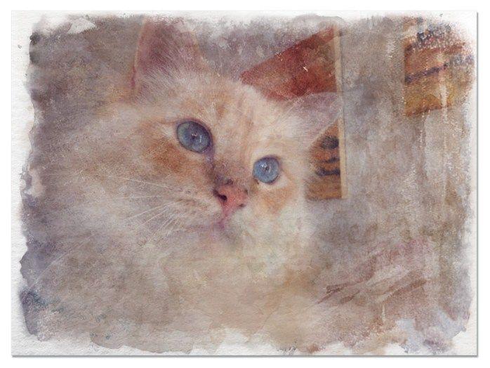 Tigerlino – Watercolor Effect