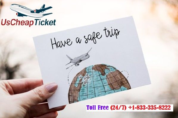 Seize The Best Deals On Tampa Flights Now Us Cheap Ticket Is Here