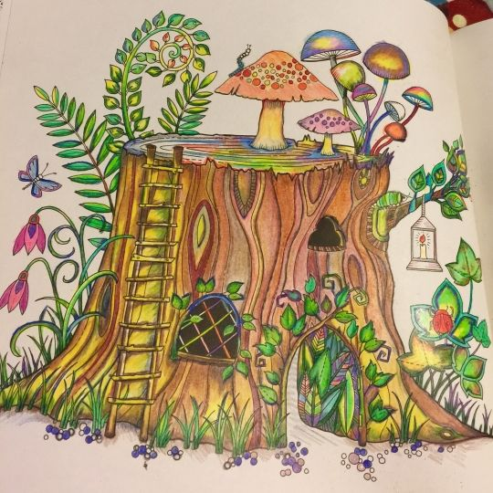 480 Best Enchanted Forest Johanna Basford Images On