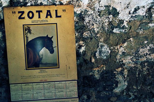 Zotal (Monistrol de Calders, Spain)