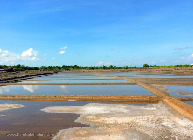 Tambak garam di pantai Batu Nampar (Coastal salt ponds in Batu Nampar), East Lombok, Indonesia. For more information, please visit www.LombokExplore.com.