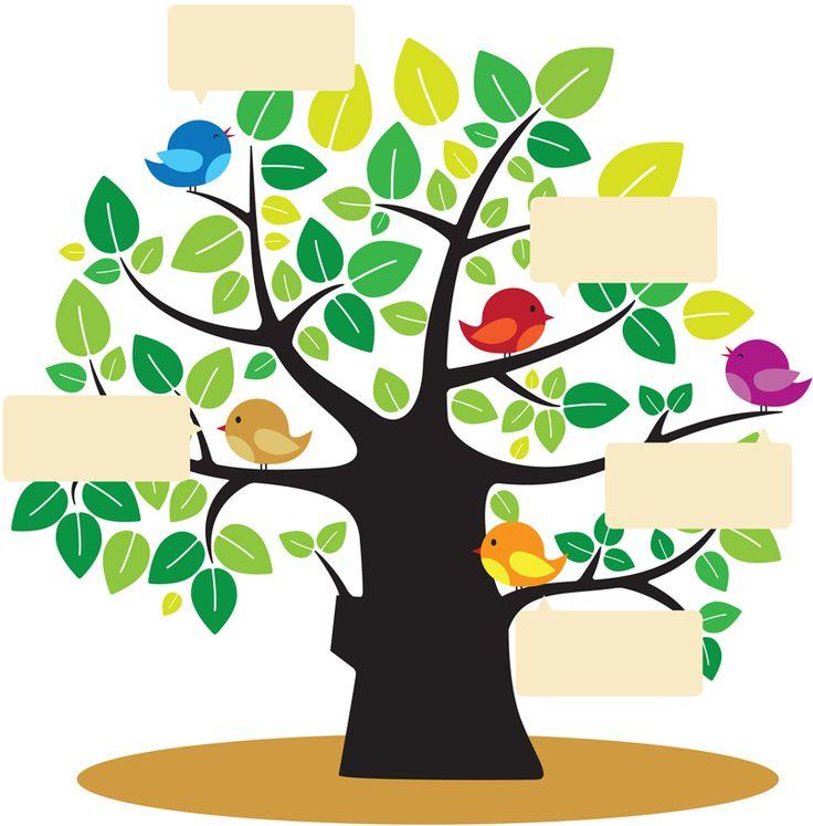 17 mejores ideas sobre dibujo de arbol genealogico en for Nombres de arboles en ingles
