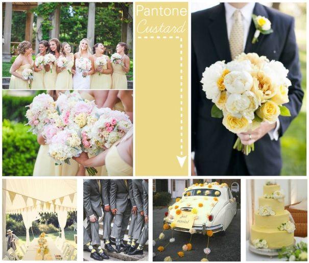 Pantone Spring of '15 Color Inspiration: Custard Pantone Spring 2015 Custard — Craig Sole Design