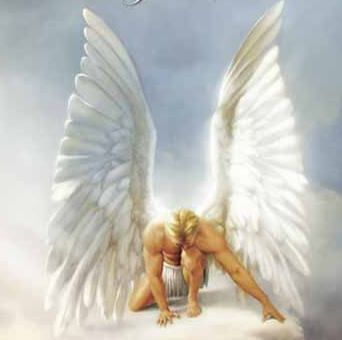 Guardians and messengers from the higher realm, Angel's main purpose are…