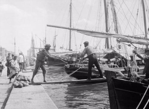 Ναυτεργάτες ξεφορτώνουν καρπούζια στο λιμάνι τον Σεπτέμβριο του 1916. Φωτογραφία: Ariel Varges