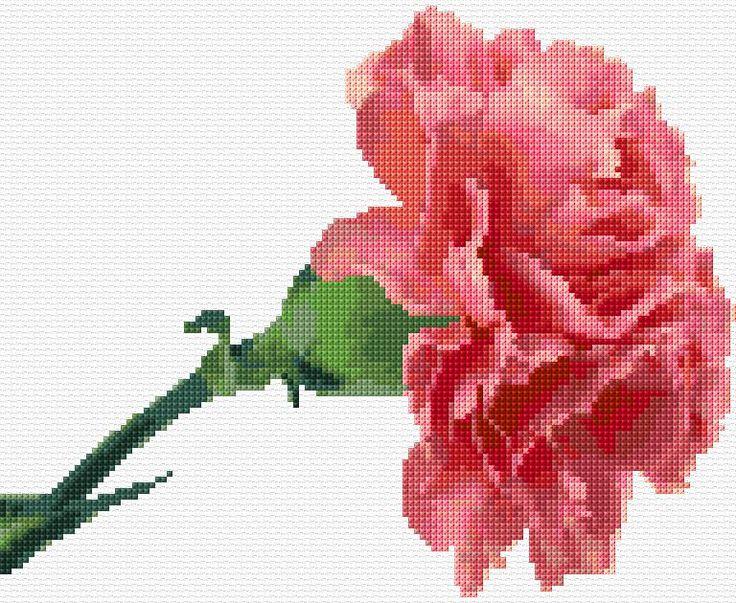 Cross Stitch | Pink Carnation xstitch Chart | Design