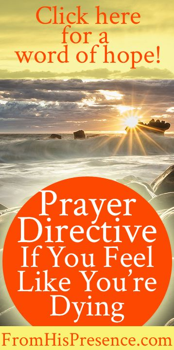 A rhema, on-time word of hope and encouragement for you if you feel like you're dying. Pray this simple prayer and claim God's promise from Psalm 12! #Prayer Directive #Hope #Encouragement #NewBeginnings