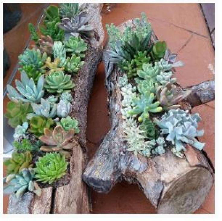 1000 id es sur le th me souche d arbre sur pinterest id es d 39 am nagement paysager tronc et - Souche d arbre decorative ...