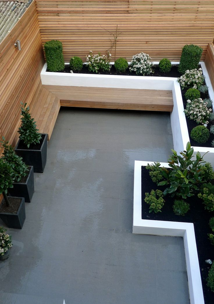 Garden design designer clapham balham battersea small low maintenance modern garden (1 ...