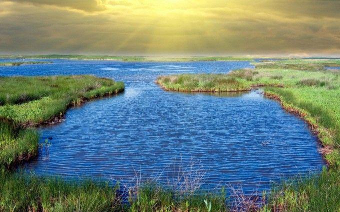 Sunbeams Over Beautiful Wetland