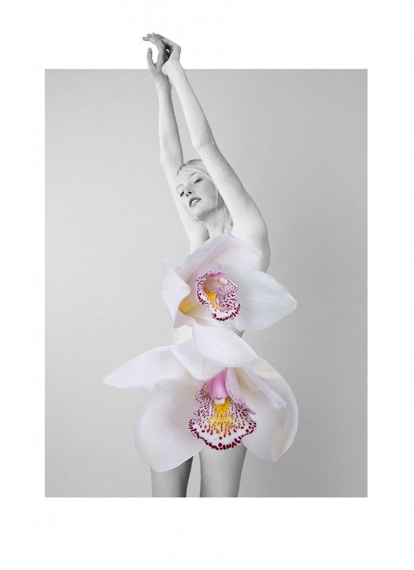 fleur-collage-mode-07