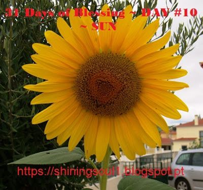 ShiningSoul: Day #10 ~ 31 Days of Blessing: SUN /  Dia #10 ~ 31...