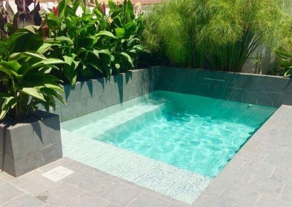 Small Swimming Pool Ideas 21 Simple Designs For Minimalist Home Small Pool Design Backyard Pool Small Swimming Pools