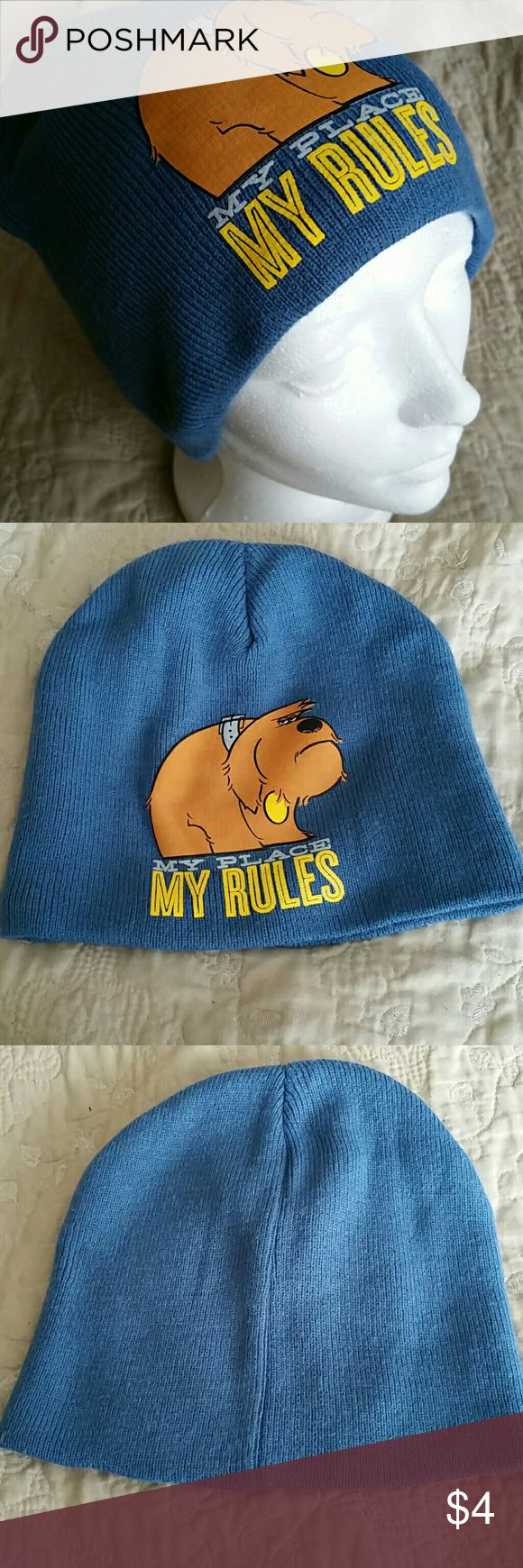 """The Secret Life of Pets Beanie Blue beanie featuring Duke,  """"My place my rules"""", character from the Secret Life of Pets (Illumination Entertainment). NWOT. Illumination Entertainment Accessories Hats"""