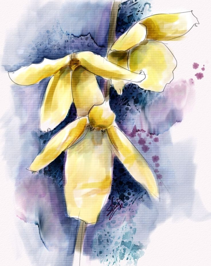 Watercolor Flowers And Paint Brushes: 48 Best Images About Skip Allen Paints On Pinterest