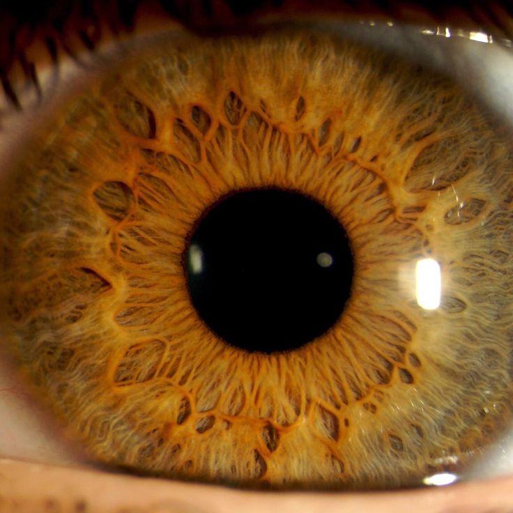 уже давно картинки глаз печенки вязаная