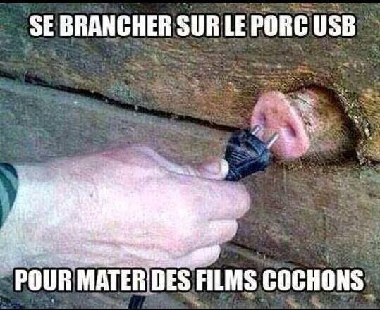 Se brancher sur le porc USB