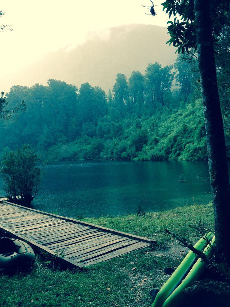 Parque Futangue, lago Ranco, Chile
