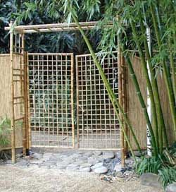 197 Best Images About Bamboo On Pinterest