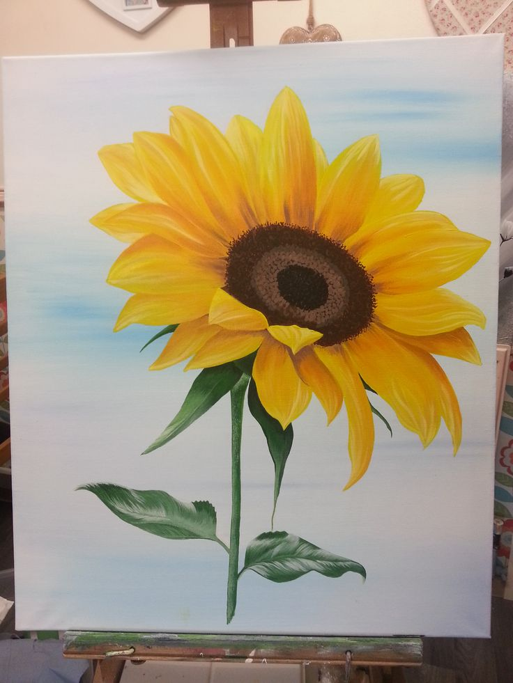 sunflower on canvas painted in acylics