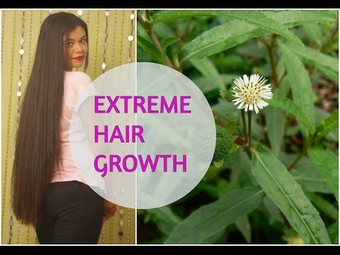 Home Remedy For EXTREME HAIR GROWTH. Indian Ayurvedic Secret|Sushmita's Diaries - YouTube