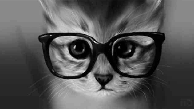 Curiosidades Interesantes De Los Gatos Sabías Que Gatos Caratulas Para Trabajos Amantes De Los Gatos