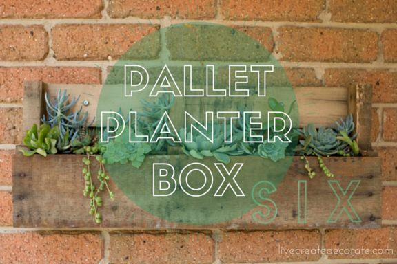 Succulent Pallet Planter Box