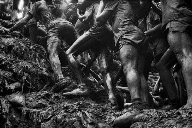 The Gold Mine Portfolio - Series - Peter Fetterman