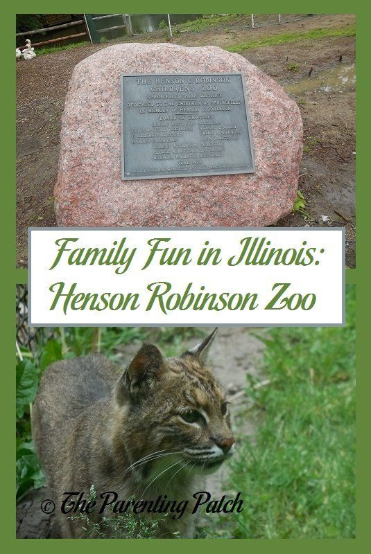 The Henson Robinson Zoo is home to over 90 species of native and exotic animals native to Australia, Africa, Asia, and North and South America. If you are ever in the Springfield area of Illinois, I highly recommend spending a few hours at the Henson Robi