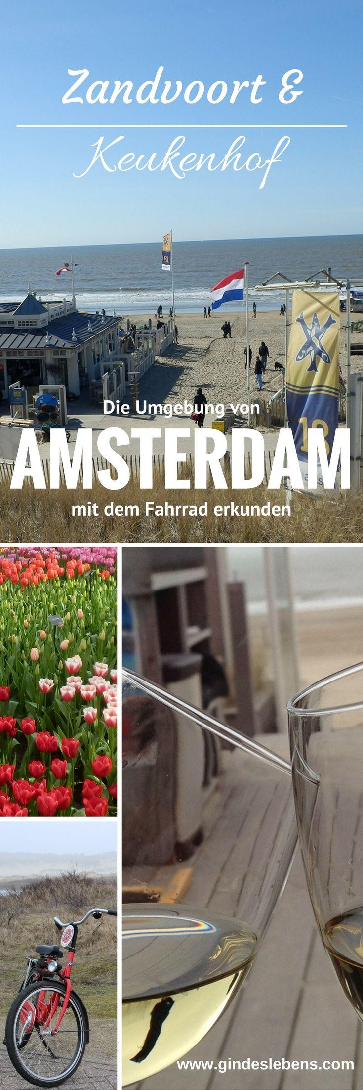 Amsterdam eine Liebesgeschichte Teil 2