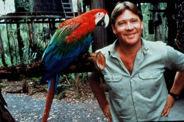 Image result for steve irwin parrots