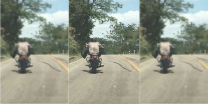WTF! Snake Tries To Bite This Biker On The Road – Thankfully He Is Safe