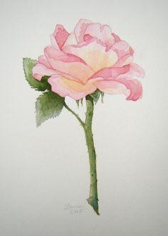 flower watercolor drawings