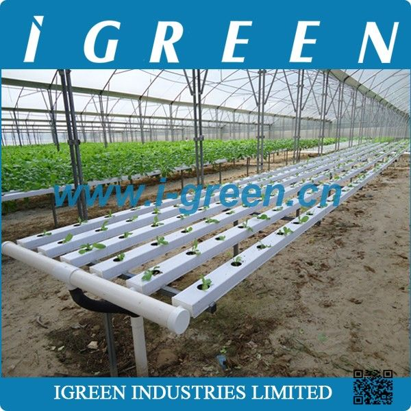 Source Commercial nft hydroponics system on m.alibaba.com