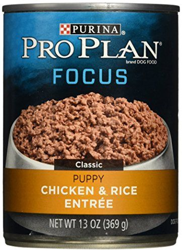 Purina Pro Plan Wet Dog Food Focus Puppy Chicken  Rice Entree Classic 13Ounce Can Pack of 12 >>> Check out the image by visiting the link.
