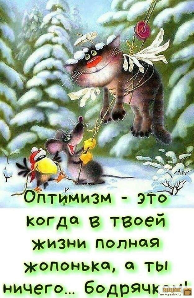 Оптимизм цитаты картинки
