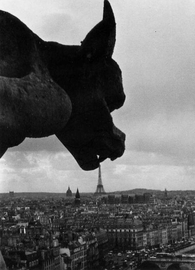 Robert Doisneau - Gargouille à Notre-Dame de Paris, 1969
